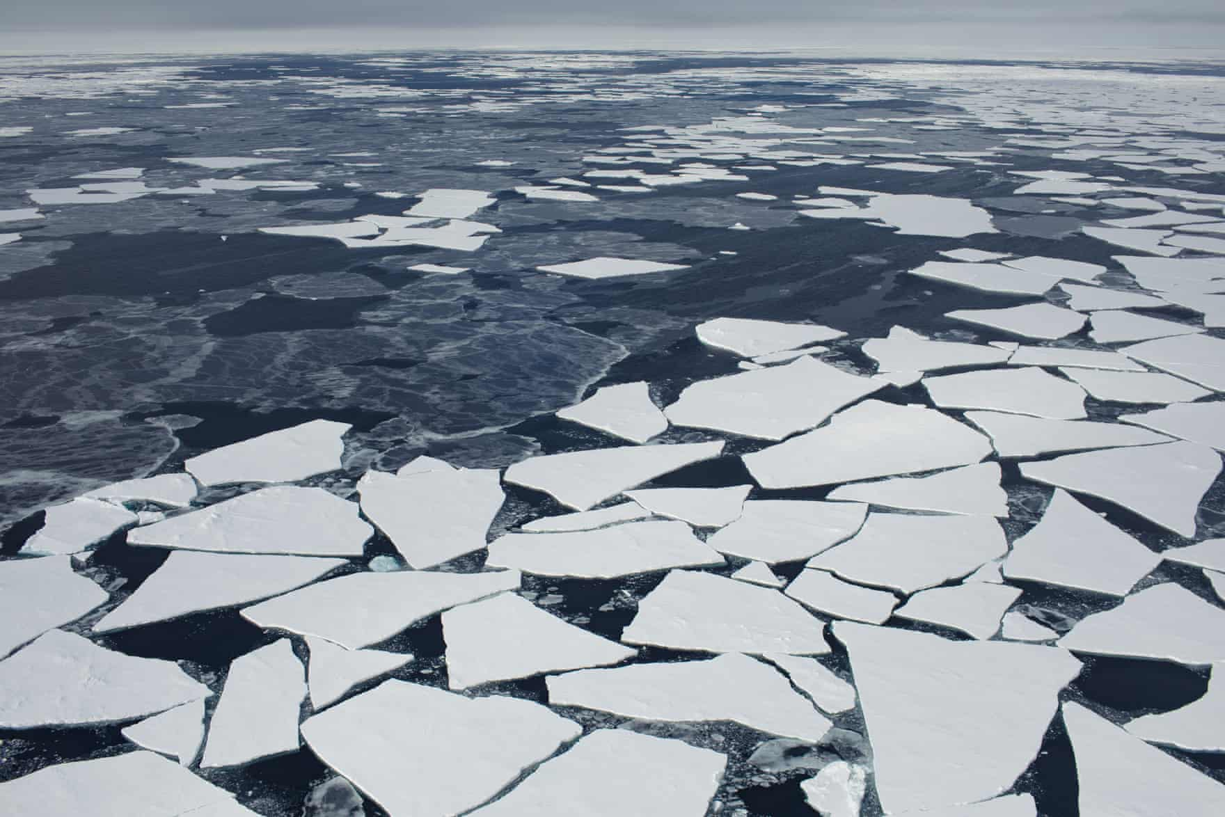 Floating ice floes along one edge of Fram Strait. Photograph: Denis Sinyakov/Greenpeace